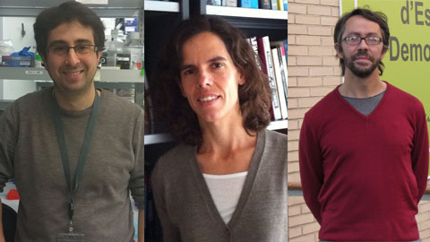Los investigadores premiados con las Starting Grants 2014