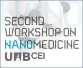 Second Workshop on Nanomedicine